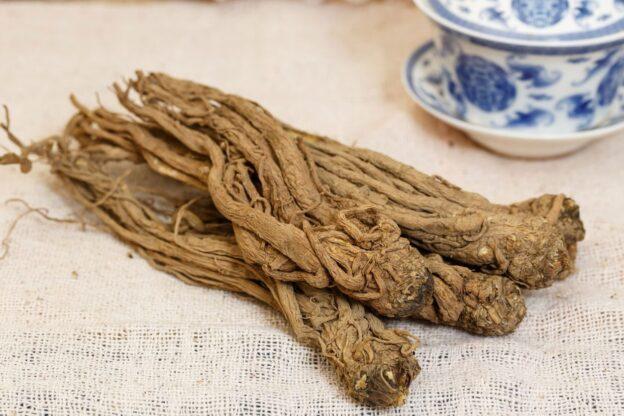 Dong Quai Ginseng Yang Digunakan Untuk Meredahkan Gejala PMS